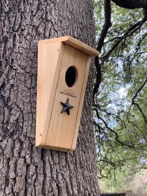 Bluebird House - Oval Opening